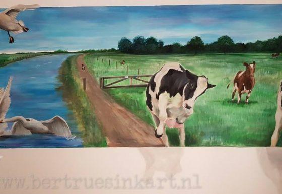 landschap met koeien!